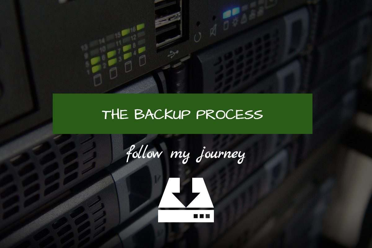 the backup process