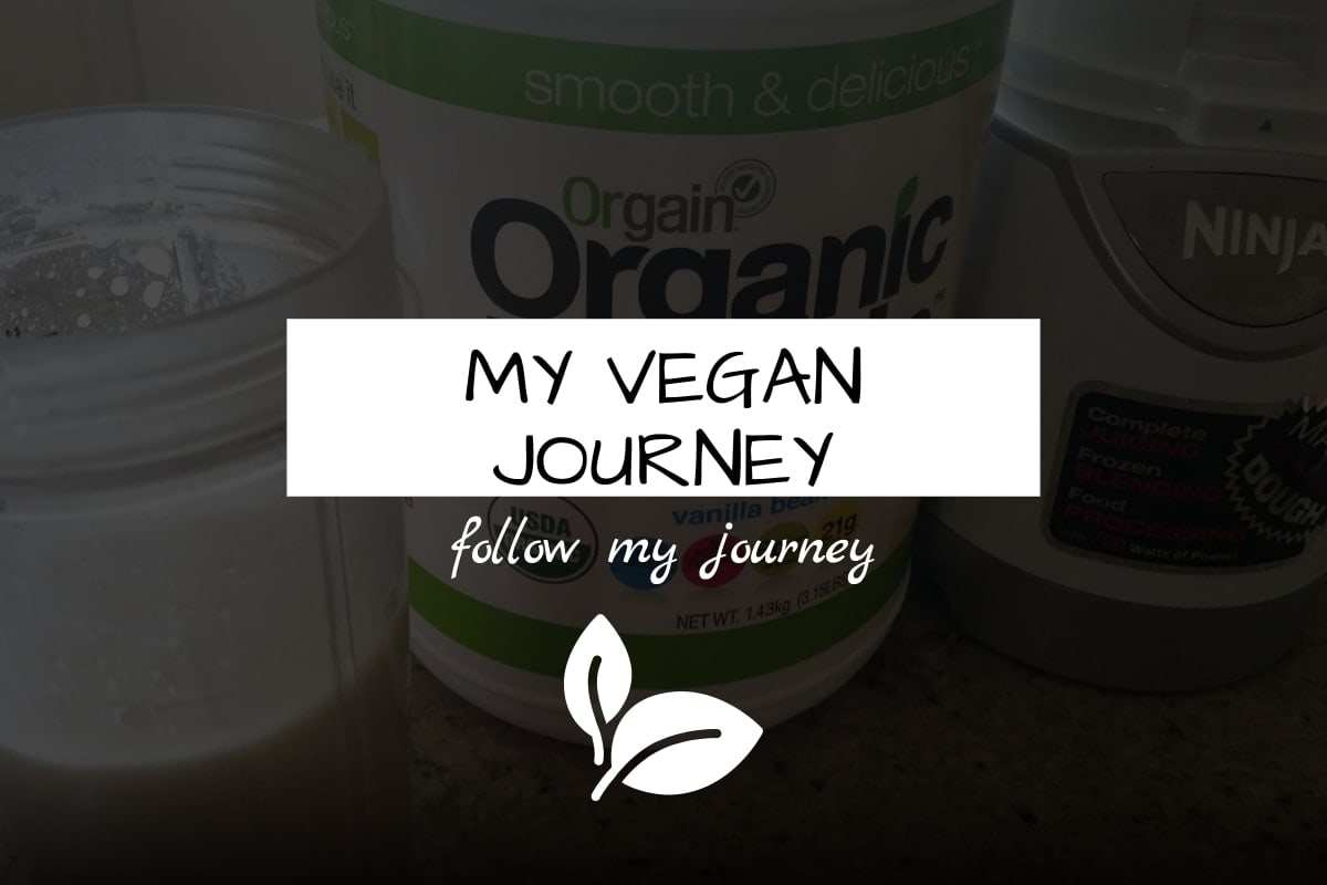 my vegan journey