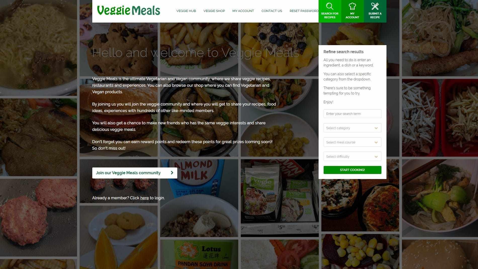 Marco Tran Veggie Meals Portfolio