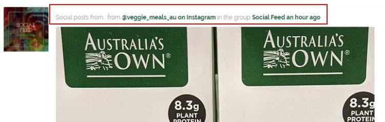 Veggie Meals Vegan Vegetarian BuddyPress Group Instagram Social Media Posts Title